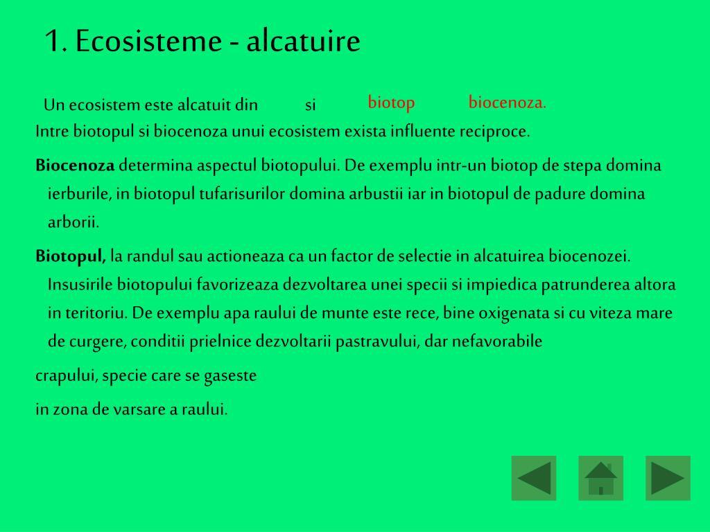 PPT - Ecosisteme PowerPoint Presentation, free download ...