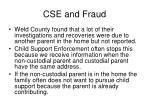 cse and fraud