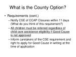 what is the county option1