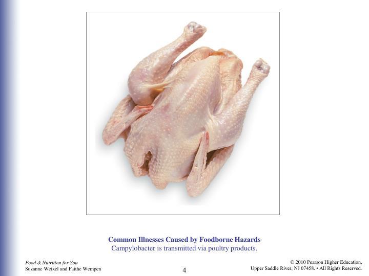 Common Illnesses Caused by Foodborne Hazards