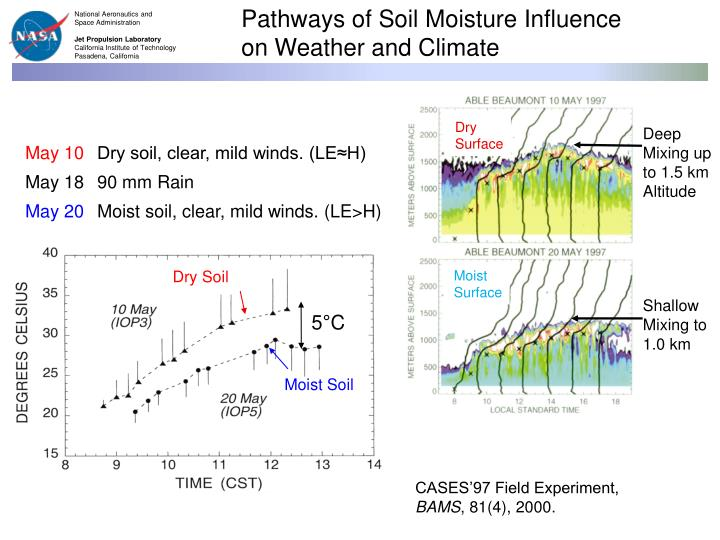Pathways of Soil Moisture Influence on Weather and Climate