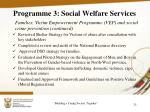 programme 3 social welfare services10