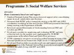 programme 3 social welfare services11