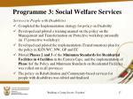 programme 3 social welfare services2