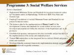 programme 3 social welfare services3