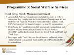 programme 3 social welfare services5