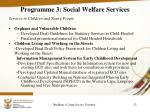 programme 3 social welfare services8