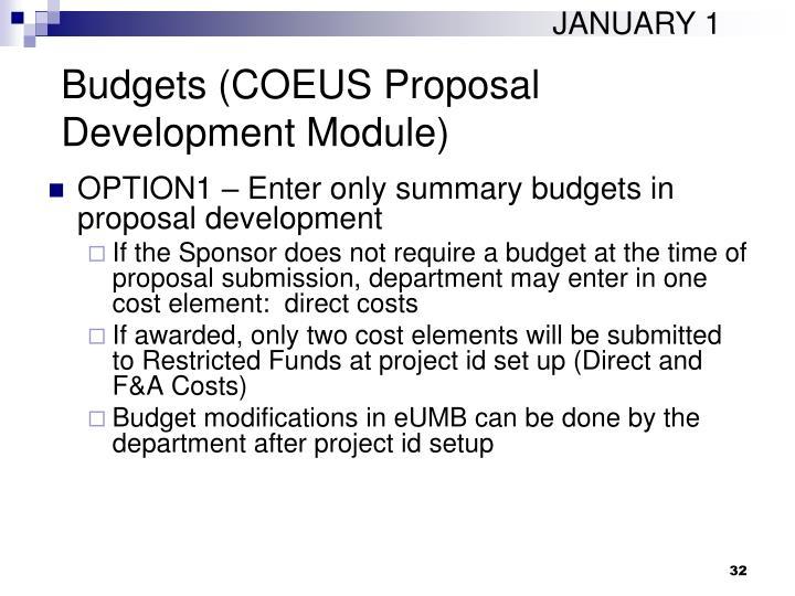 Budgets (COEUS Proposal Development Module)