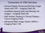 consumers of visa services