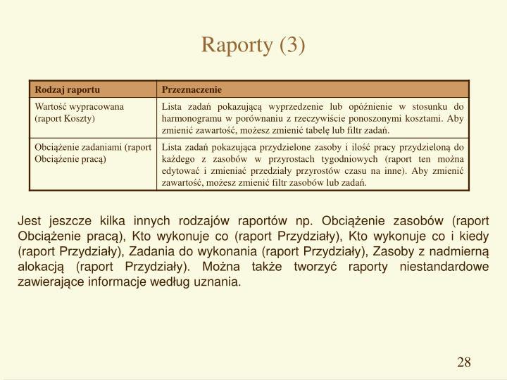 Raporty (3)