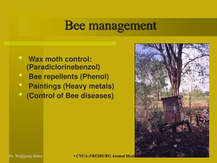 Bee management