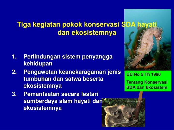 Tiga kegiatan pokok konservasi SDA hayati dan ekosistemnya