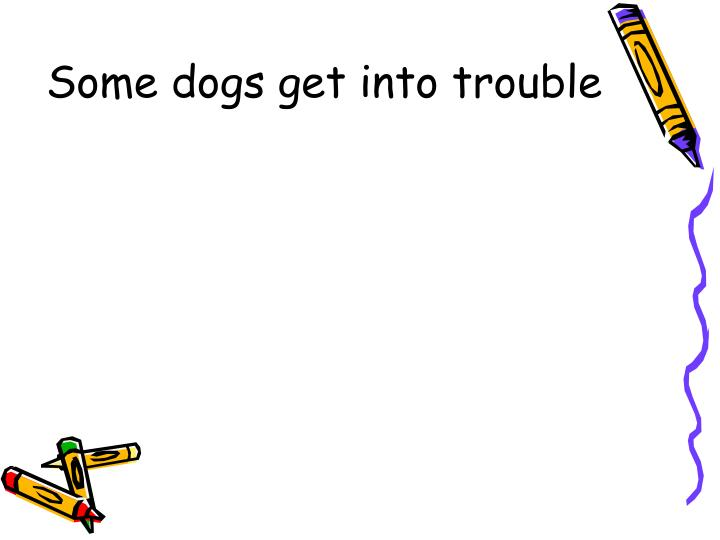 Some dogs get into trouble