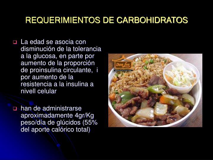 REQUERIMIENTOS DE CARBOHIDRATOS