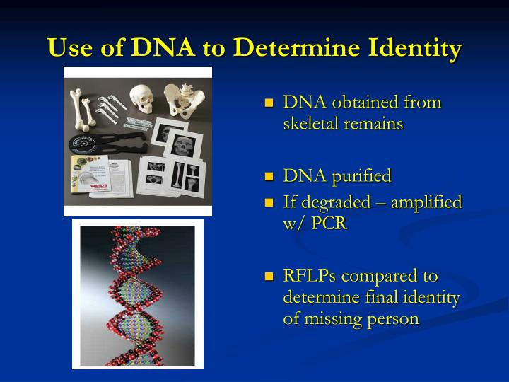 Use of dna to determine identity1