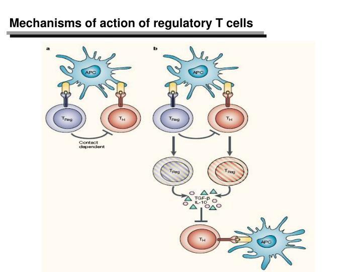 Mechanisms of action of regulatory T cells