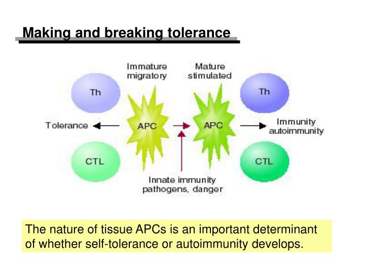 Making and breaking tolerance
