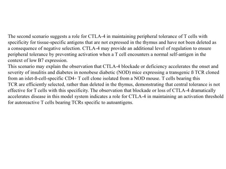 The second scenario suggests a role for CTLA-4 in maintaining