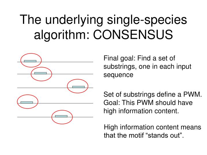 The underlying single-species algorithm: CONSENSUS
