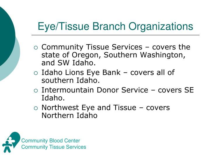 Eye tissue branch organizations