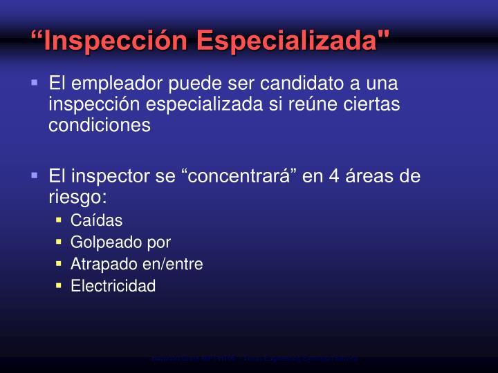 """""""Inspección Especializada"""""""