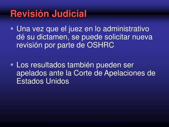 Revisión Judicial