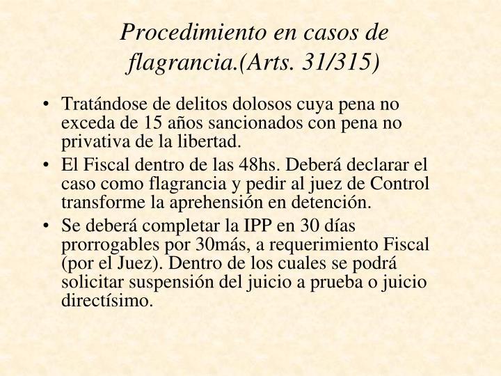 Procedimiento en casos de flagrancia.(Arts. 31/315)