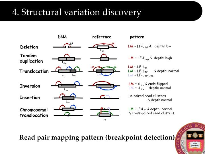 4. Structural variation discovery