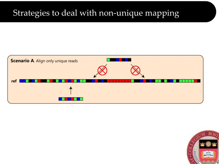 Strategies to deal with non-unique mapping