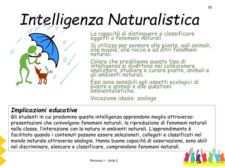 Intelligenza Naturalistica