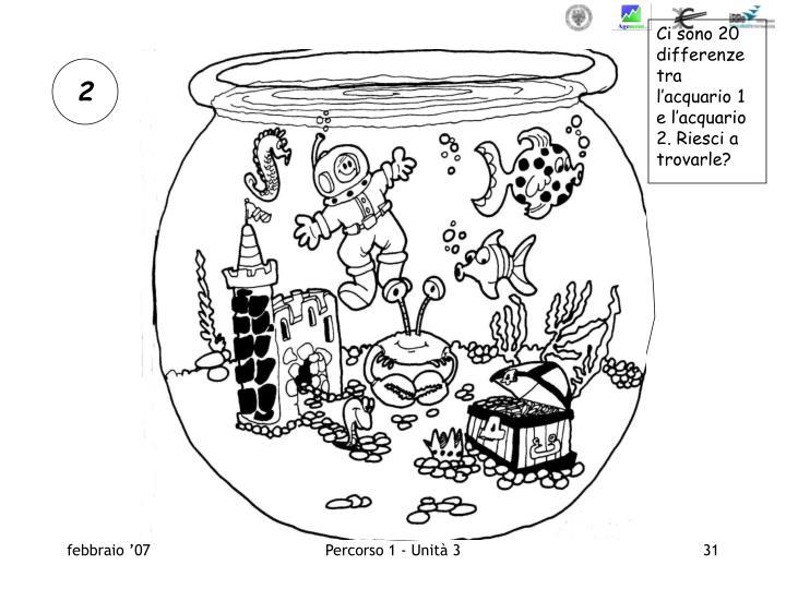 Ci sono 20 differenze tra l'acquario 1 e l'acquario 2. Riesci a trovarle?