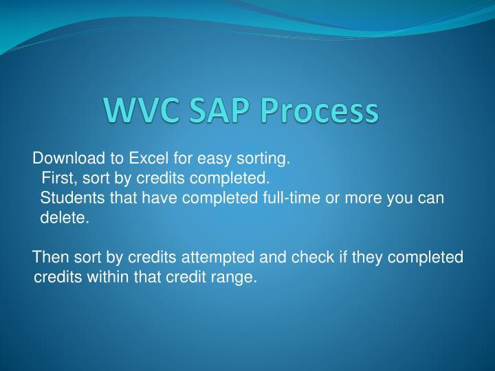 Wvc sap process1