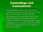 camouflage and concealment1