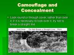 camouflage and concealment3