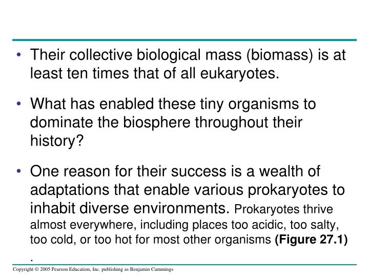 Their collective biological mass (biomass) is at least ten times that of all eukaryotes.
