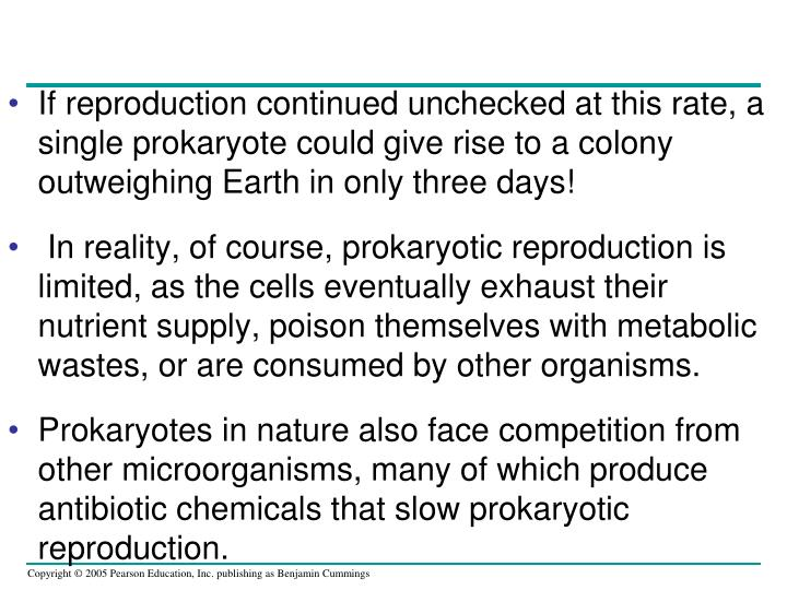 If reproduction continued unchecked at this rate, a single prokaryote could give rise to a colony outweighing Earth in only three days!