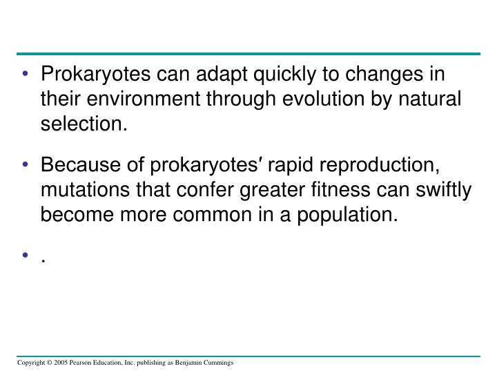 Prokaryotes can adapt quickly to changes in their environment through evolution by natural selection.