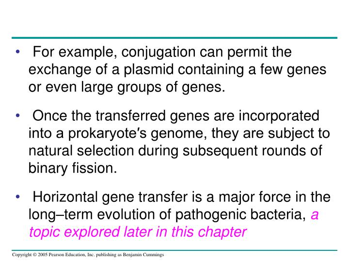 For example, conjugation can permit the exchange of a plasmid containing a few genes or even large groups of genes.