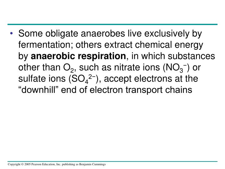 Some obligate anaerobes live exclusively by fermentation; others extract chemical energy by