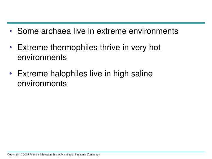Some archaea live in extreme environments
