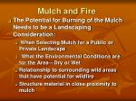 mulch and fire
