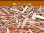 mulches used3
