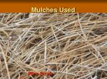 mulches used5