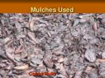 mulches used7