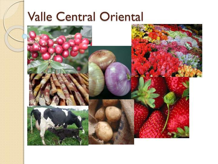 Valle Central Oriental