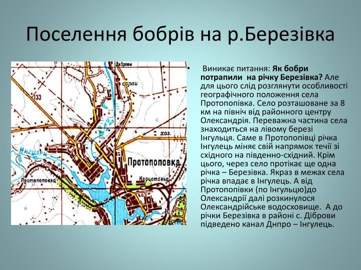 Поселення бобрів на р.Березівка