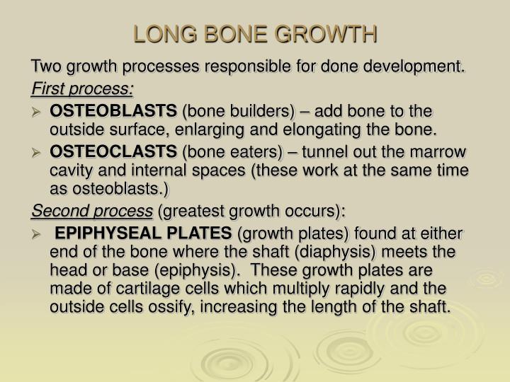 LONG BONE GROWTH