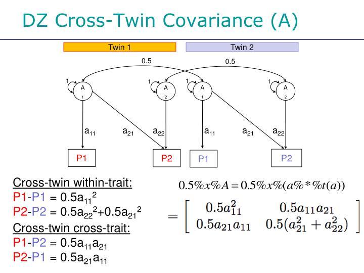 DZ Cross-Twin Covariance (A)