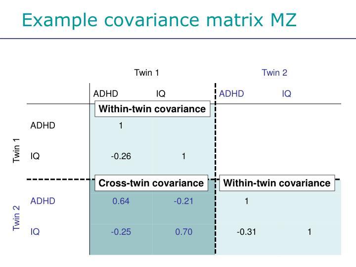 Example covariance matrix MZ
