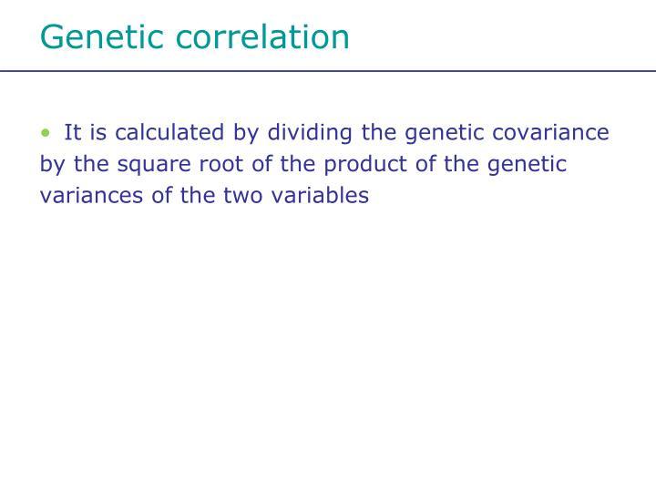 Genetic correlation